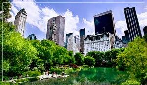 NY NYC Central Park